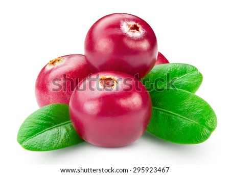 cranberries isolated on white. Clipping path - stock photo