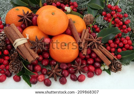 Cranberry and mandarin orange christmas fruit with cinnamon and star anise spice, holly, mistletoe, ivy and snow covered fir. - stock photo