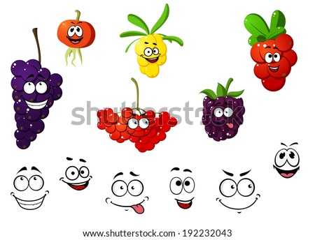 Cranberry, blackberry, rowan, cherry, grape and sea-buckthorn berries. Cartoon style. Vector version also available in gallery - stock photo