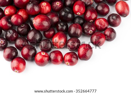 Cranberry Fruit On White Background - stock photo