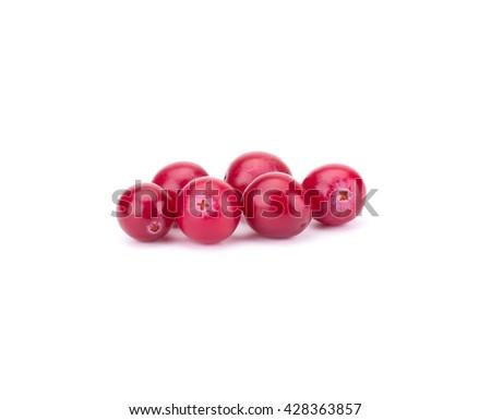 Cranberry isolated on white background closeup - stock photo