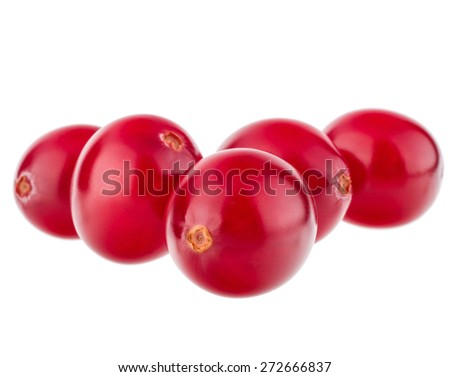 cranberry  isolated on white background cutout - stock photo