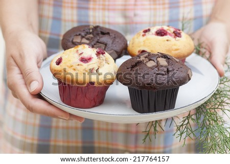 Cranberry muffins and Double chocolate chip muffins on a plate in woman's hand. - stock photo