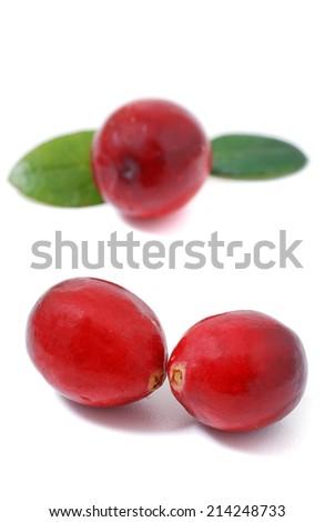 Cranberry on white background - stock photo