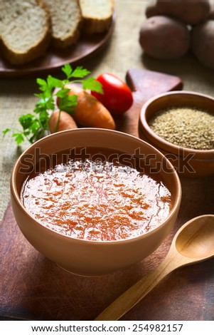 Cream of vegetable soup made of tomato, carrot, potato, parsley served in bowl, bread slices and ingredients in back, photographed with natural light (Selective Focus, Focus one third into the soup) - stock photo