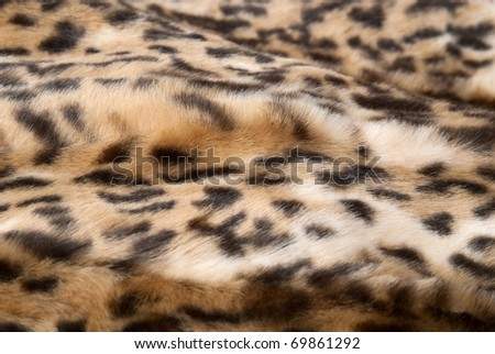 Creative background from a Leopard print - stock photo