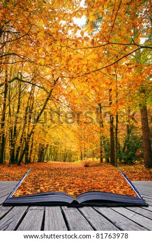 Creative concept idea of Beautiful autumn fall forest scene with vibrant colors and excellent detail coming out of pages in magical book - stock photo