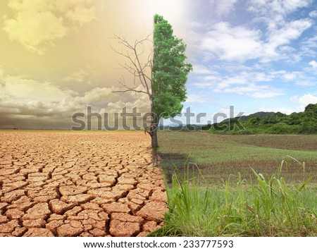 creative concept image compare of global warming.  - stock photo