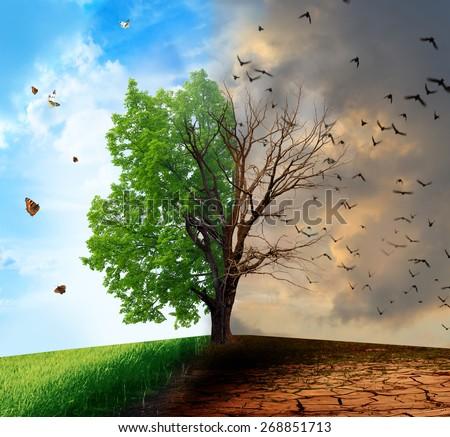 Creative concept landscape. Live and dead tree - stock photo