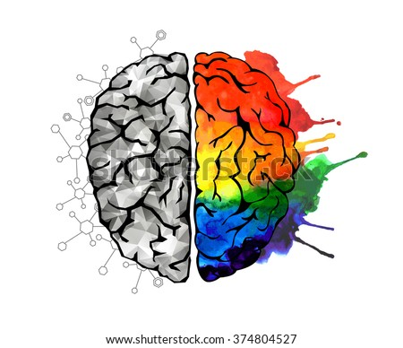Creative concept of the human brain. Left and right side. Brain left and right side hemispheres concept. - stock photo