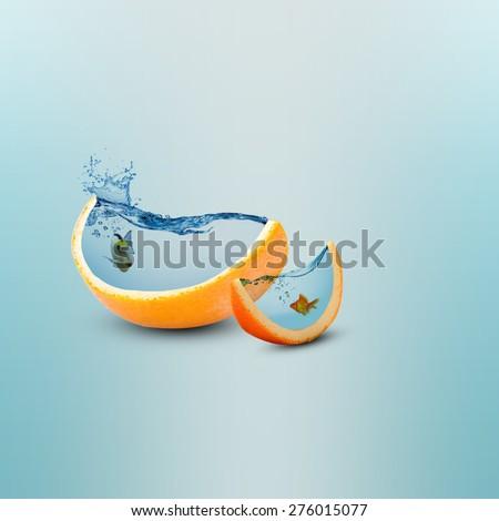 Creative orange fruit slice aquarium photo manipulation/Juicy orange fruit slice/Creative design - stock photo