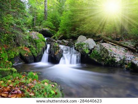 Creek in the national park Sumava - Czech Republic - stock photo