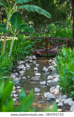 Creek in the tropical carden with little wooden bridge - stock photo