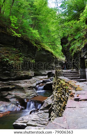 creek in woods with rocks and stream in Watkins Glen state park in New York State - stock photo