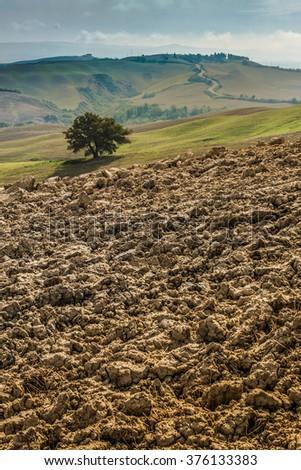 Crete Senesi characteristic landscape in province of Siena (Tuscany, Italy) - stock photo