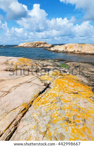 Crevice with yellow lichen on the rocks at the water - stock photo