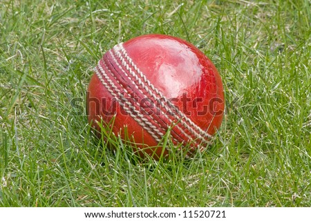 Cricket ball in the grass - stock photo