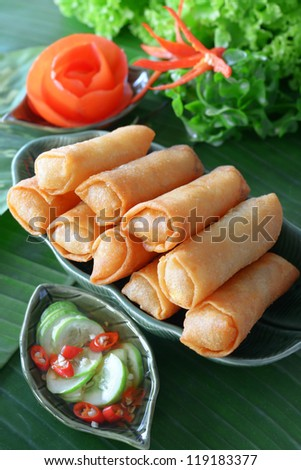 Crispy Chinese Traditional Spring rolls food on dish - stock photo
