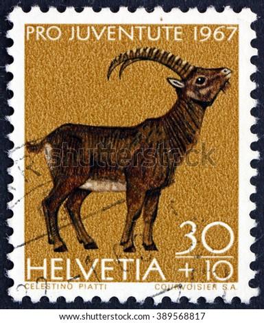 CROATIA ZAGREB, 7 FEBRUARY 2016: a stamp printed in the Switzerland shows Alpine Ibex, Capra Ibex, Wild Goat, circa 1967 - stock photo