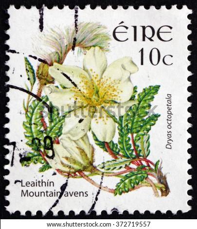 CROATIA ZAGREB, 30 JANUARY 2016: a stamp printed in Ireland shows Mountain Avens, Dryas Octopetala, Flowering Plant, circa 2004 - stock photo