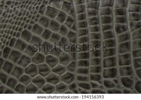 "Crocodile bone skin texture background. This image of Freshwater Crocodile ""Crocodylus siamensis"".Thi s skin is very classic and beauty. - stock photo"