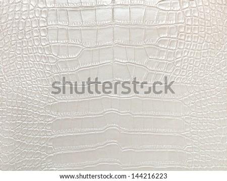 Crocodile bone skin texture background. White Color. - stock photo