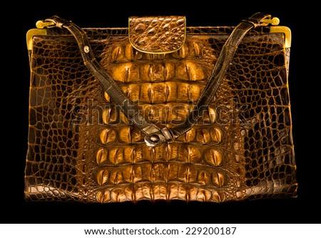 crocodile handbag on a black background - stock photo