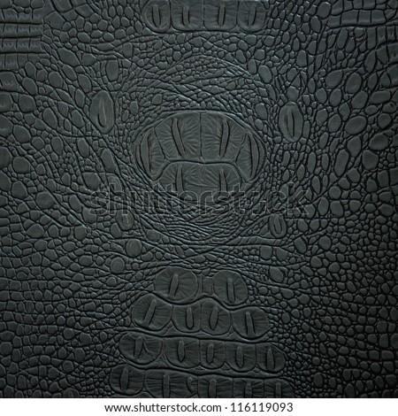 crocodile leather black - stock photo