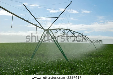 Crop irrigation 1 - stock photo