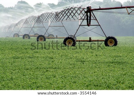 Crop Irrigation - stock photo