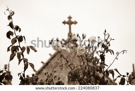 Cross and roses. A church in Dinan (Brittany, France). Selective focus on the flowers. Aged photo. Sepia. - stock photo
