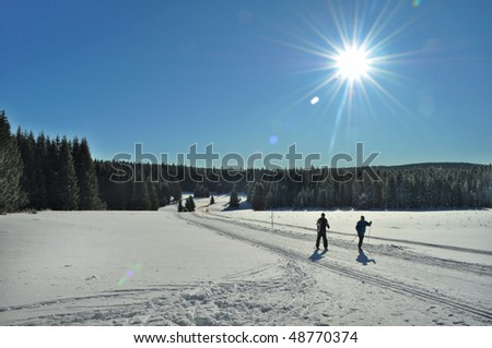 cross-country ski in winter country - stock photo
