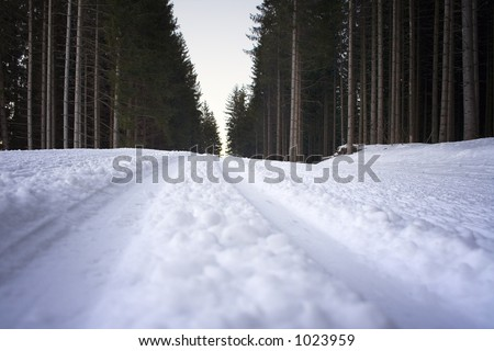 Cross-Country Ski Run - stock photo