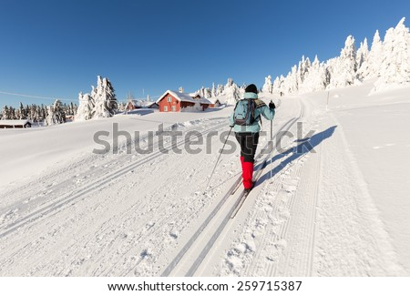 Cross Country Skier climbing a hillside with Log Cabins and snow covered firs, - stock photo