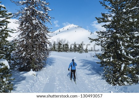 Cross-country skier on a perfect winter day in Idaho - stock photo