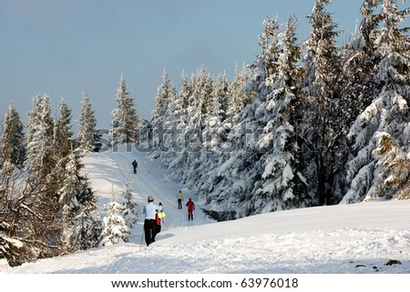 Cross country skiing - stock photo