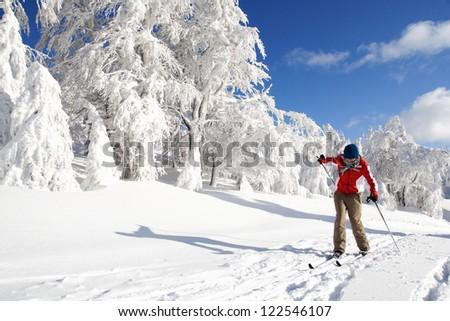 Cross-country skiing tumble - stock photo