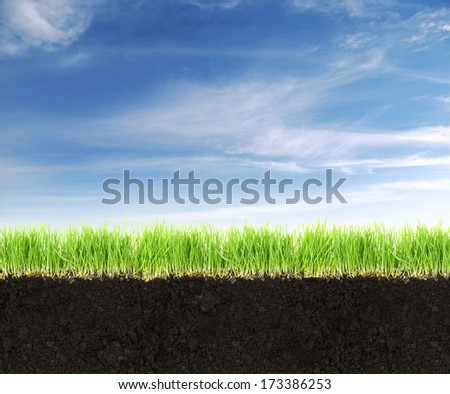 Cross-section of land with soil,grass and blue sky. - stock photo