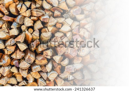 Cross section of the timber for the background.with space for text. - stock photo
