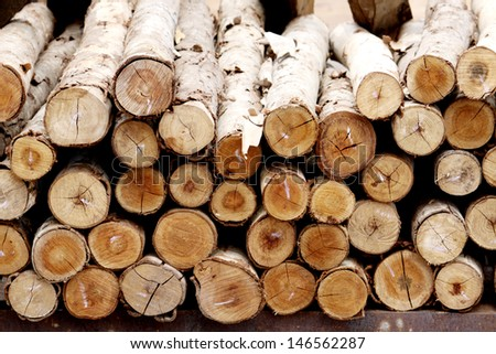 Cross-section wooden background - stock photo