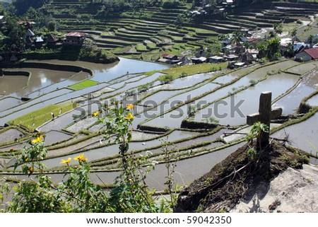 Cross, water and rice terrases in Batad near Banaue - stock photo