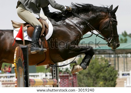 Crossing The Hurdle – Equestrian Theme (shallow focus) - stock photo