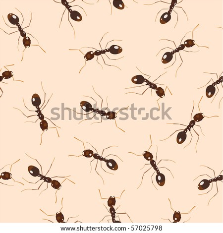 Crowling ants. Seamless pattern - stock photo