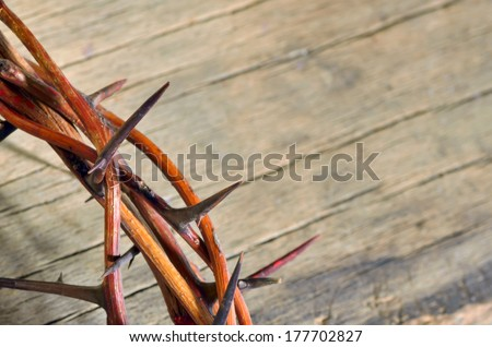crown of thorns on wood background - stock photo