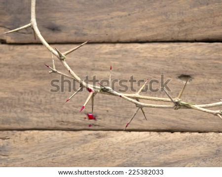 Crown of thorns with blood on a old wooden background. Focus on highest thorn on blurred The other thorn and wooden background  - stock photo