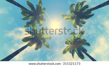 Crowns of four palm trees against blue sky with sun at its zenith - stock photo