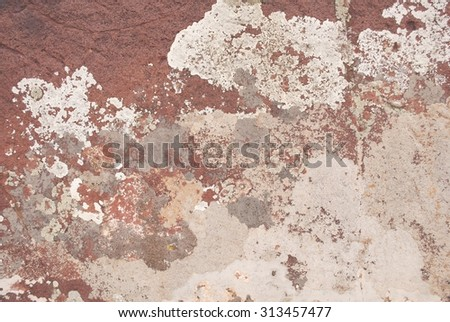Crustose Type Lichens Growing on Surface of a Rock  - stock photo