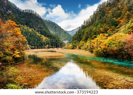 Crystal clear water of river among fall woods in mountain gorge, Jiuzhaigou nature reserve (Jiuzhai Valley National Park), China. Autumn landscape with forest in the Min Mountains (Minshan). - stock photo