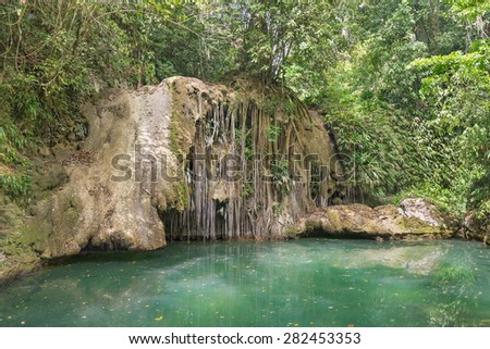 Crystalline water in venezuelan forest, near the Zumbador Caves in Falcon state - stock photo