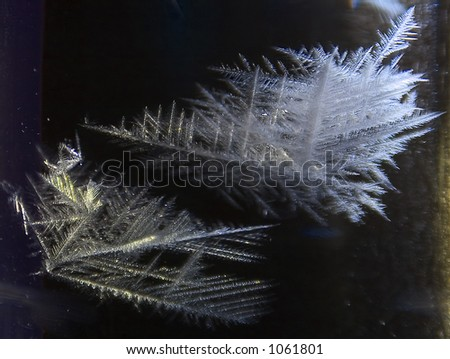 Crystallization of snowflakes - stock photo